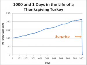 1000 and 1 Days in the Life of a Thanksgiving Turkey