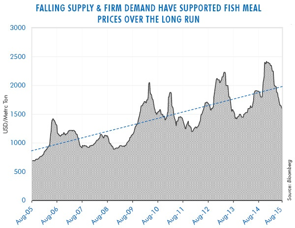 Falling Supply & Firm Demand Have Supported Fish Meal Prices over the Long Run