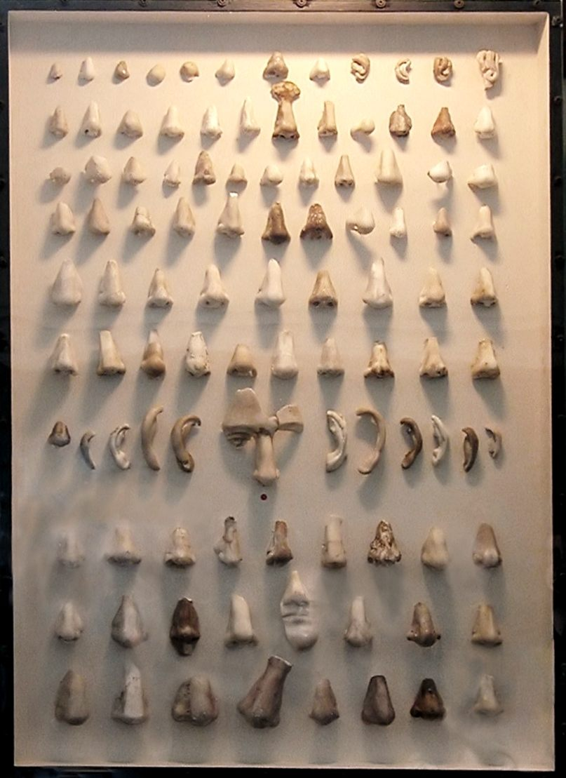 Noses Exhibit