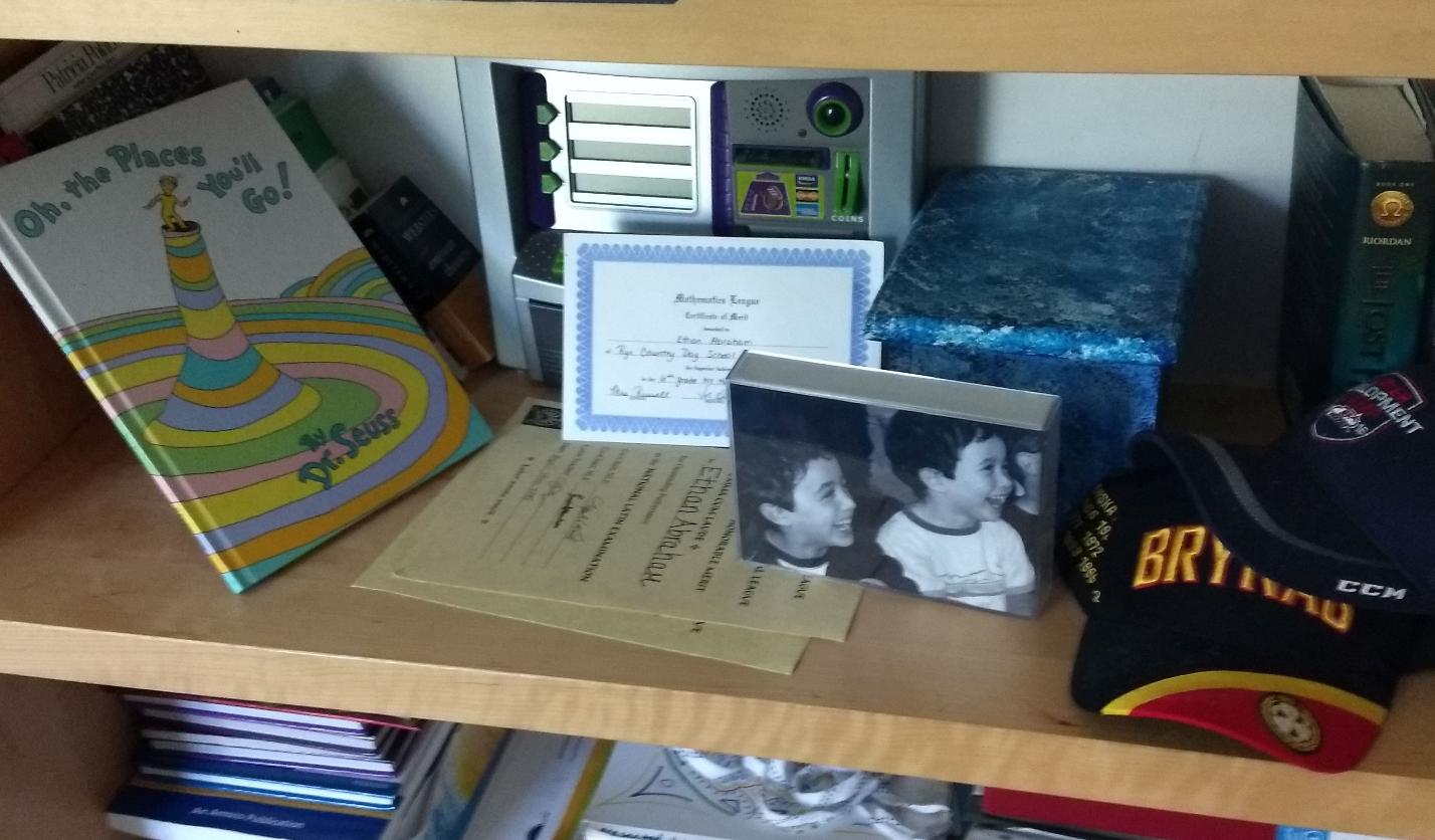 zev bookshelf