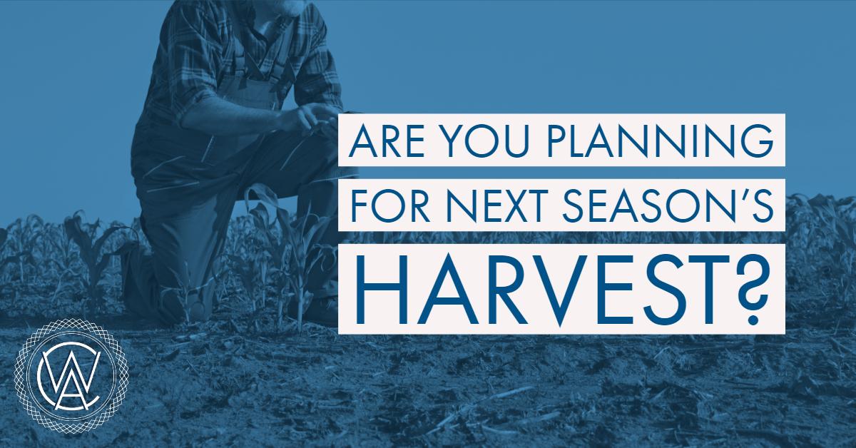 Next Seasons Harvest