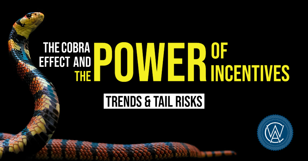 The Cobra Effect and the Power of Incentives